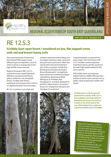 RE 12.5.3: Scribbly Gum open forest to woodland on low flat-topped crests with red & brown loamy soils