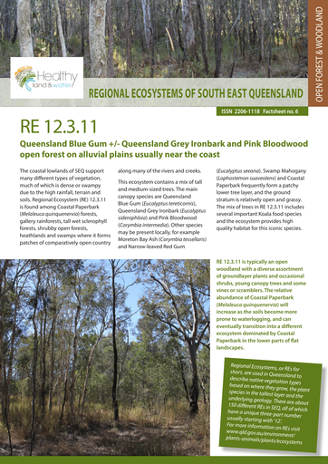RE 12.3.11: Queensland Blue Gum +/- Queensland Grey Ironbark and Pink Bloodwood