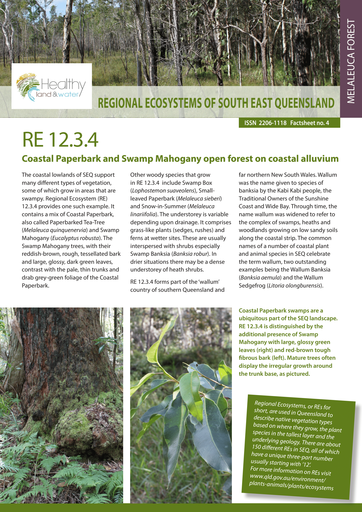 RE 12.3.4: Coastal Paperbark and Swamp Mahogany open forest on coastal alluvium
