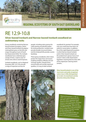 RE 12.9-10.8: Dry Rainforests and Semi-evergreen Vine Thickets of South East Queensland