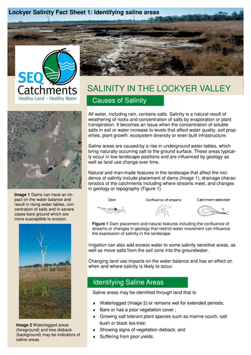 Lockyer Salinity Fact Sheet 1: Identifying saline areas