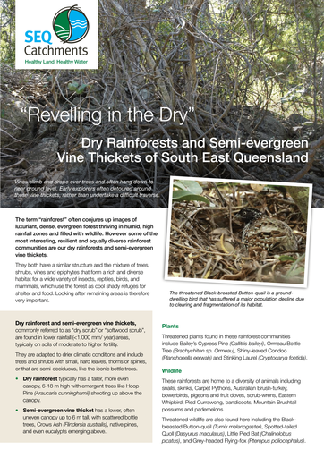 SEQC Factsheet Dry Rainforests and Semi-evergreen