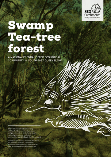Swamp Tea-tree Forest
